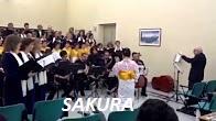 6_Sakura - Copia